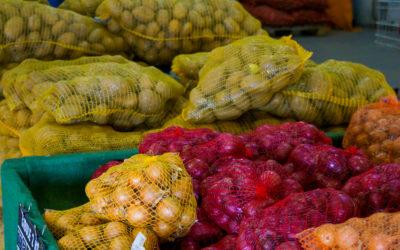 Cibule a brambory na uskladnění